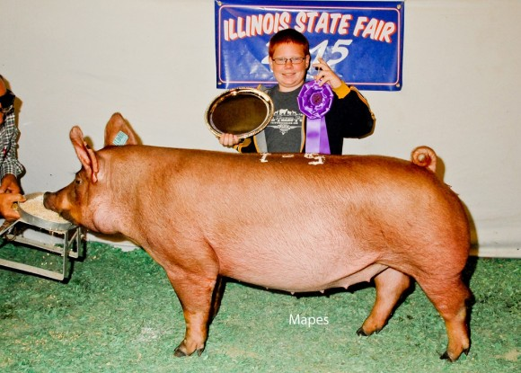 Grand Champion Gilt, Cody Hankes