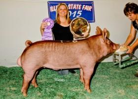 Grand Champion Boar, Ethan Keyser