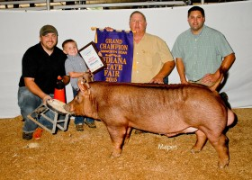 Grand Champion Boar Open Show, Clint High Farms