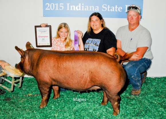 Champion Gilt Junior Show, Harleigh Lowe