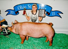 Reserve Grand Champion Junior Show Gilt, Chloe Studebaker