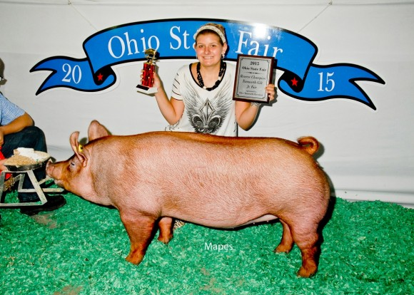 Reserve Grand Champion Junior Show Gilt, Chloe Studebaker
