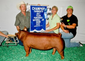 Champion Tamworth Gilt, Peyton Hill