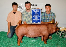 4th Place Tamworth Gilt, Lester Moore