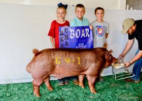 Reserve Grand Tam Boar 2020