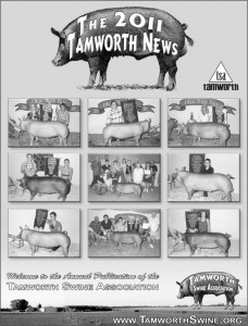 TAMWORTH-NEWS-2011