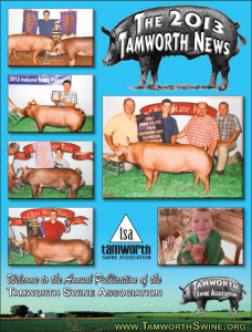 TAMWORTH-NEWS-2013